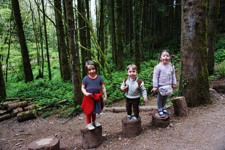 Exploring the woods at bluestone wales